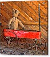 Teddy Takes A Ride Acrylic Print