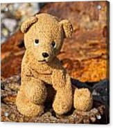 Ted's On The Rust Pile 2 Acrylic Print