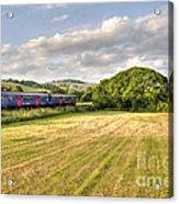 Teign Valley Sprinter  Acrylic Print