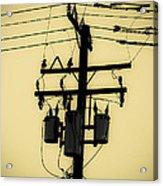 Telephone Pole 3 Acrylic Print