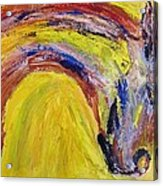 Tempest Xiiii - Zanti Acrylic Print
