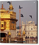 Temple At The Waterfront, Golden Acrylic Print