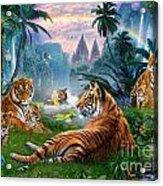 Temple Lake Tigers Acrylic Print