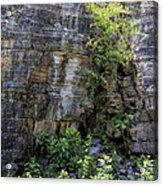 Tennessee Limestone Layer Deposits Acrylic Print