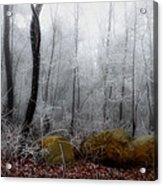 Tennessee Mountain Frost Acrylic Print