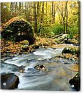 Tennessee Stream In Fall Acrylic Print