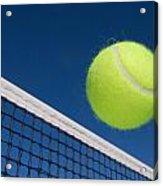 Tennis Ball And Net Acrylic Print by Joe Belanger