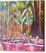 Terania Creek Acrylic Print
