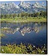 4m9310-teton Range Reflection, Blacktail Pond, Wy Acrylic Print