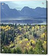 1m9209-tetons From Signal Mountain, Wy Acrylic Print