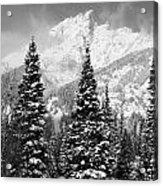 Tetons In Snow Acrylic Print