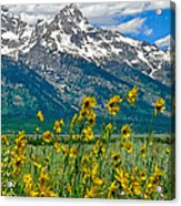 Tetons Peaks And Flowers Right Panel Acrylic Print