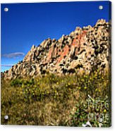 Texas Canyon Acrylic Print