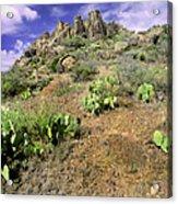 Texas Desert Acrylic Print