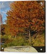 Texas Fall Color With Boat Acrylic Print