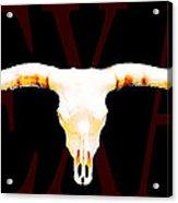 Texas Longhorns By Sharon Cummings Acrylic Print