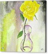 Texas Rose Acrylic Print