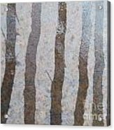 Textural Forest Acrylic Print