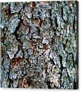 Textural Turquoise Rust Gray  Acrylic Print