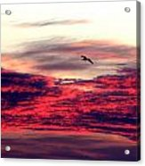 Textured Clouds Acrylic Print
