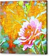 Textured Dahlia Perfection Acrylic Print