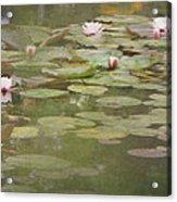 Textured Lilies Image  Acrylic Print