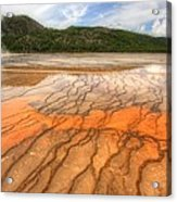 Textures Of The Grand Prismatic  Acrylic Print