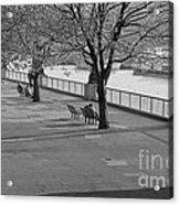 Thames Walkway Acrylic Print