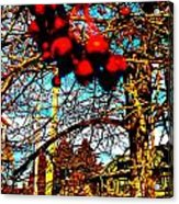 Thank You Berry Much Acrylic Print