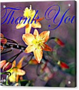 Thank You Card Acrylic Print