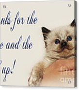 Thanks For The Rescue And The Hand Up Acrylic Print by Andee Design