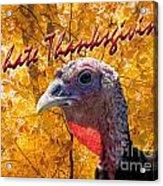 Thanksgiving Fun Acrylic Print