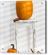 Thanksgiving Pumpkin Display Acrylic Print