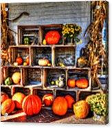 Thanksgiving Pumpkin Display No. 1 Acrylic Print