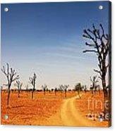 Thar Desert Acrylic Print
