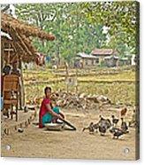 Tharu Farming Village Landscape-nepal Acrylic Print