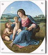 The Alba Madonna Acrylic Print by Raffaello Sanzio of Urbino