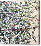 The Almond Tree Acrylic Print