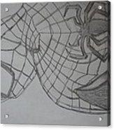 the amazing Spiderman 2 Acrylic Print