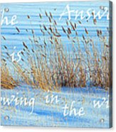 The Answer Is Blowing In The Wind Acrylic Print