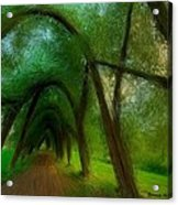 The Arch Of Heaven Acrylic Print