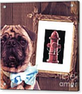 The Artist And His Masterpiece Acrylic Print by Edward Fielding