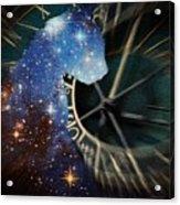 The Astronomer's Cat Acrylic Print