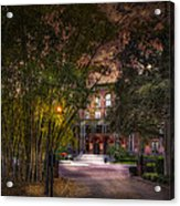 The Bamboo Path Acrylic Print