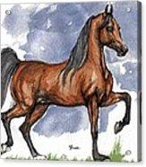 The Bay Arabian Horse 17 Acrylic Print