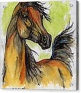 The Bay Arabian Horse 5 Acrylic Print