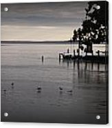 The Bay Is Frozen Acrylic Print