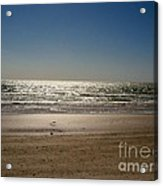 The Beach Acrylic Print