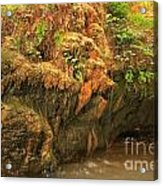 The Bearded Garden Acrylic Print