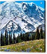 The Beautiful Mount Rainier At Sunrise Park Acrylic Print